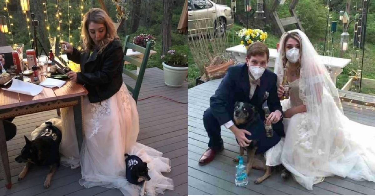 Matrimonio con damigelle speciali