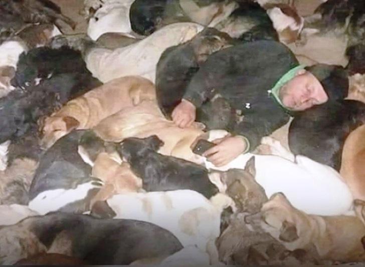 Uomo dorme con i cani