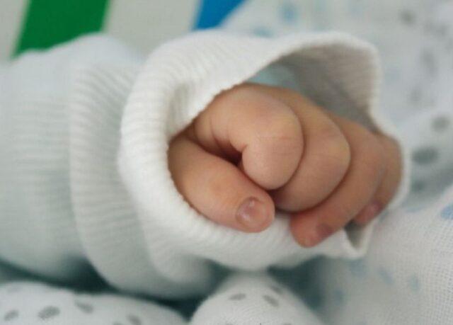 Bergantino morta neonata