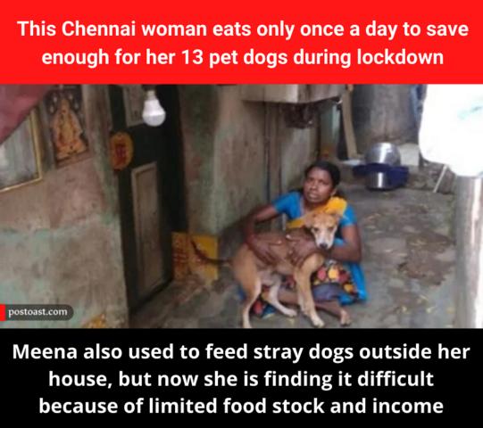 Meena rinuncia al cibo per i suoi cani