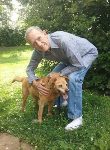 Salvato nella fogna un cane anziano