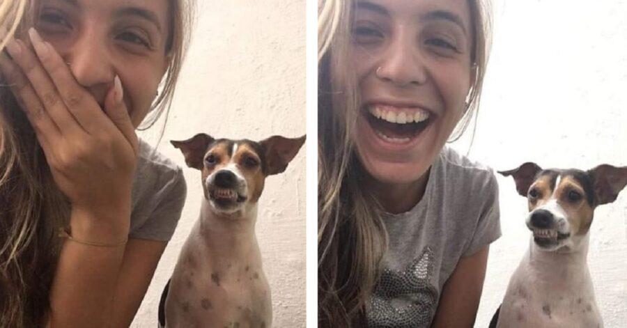 Cane sorride
