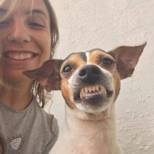 Cane sorride durante la foto