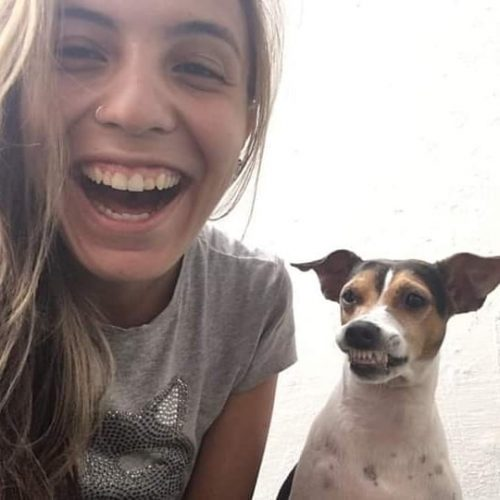Cane del rifugio sorride