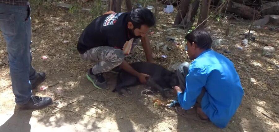 I soccorritori di Kali