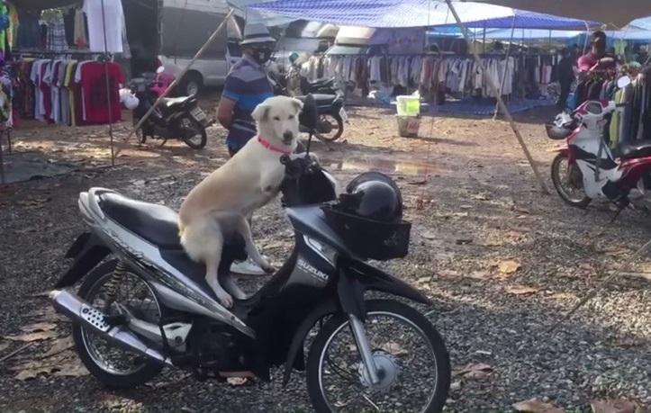 Didi sulla moto