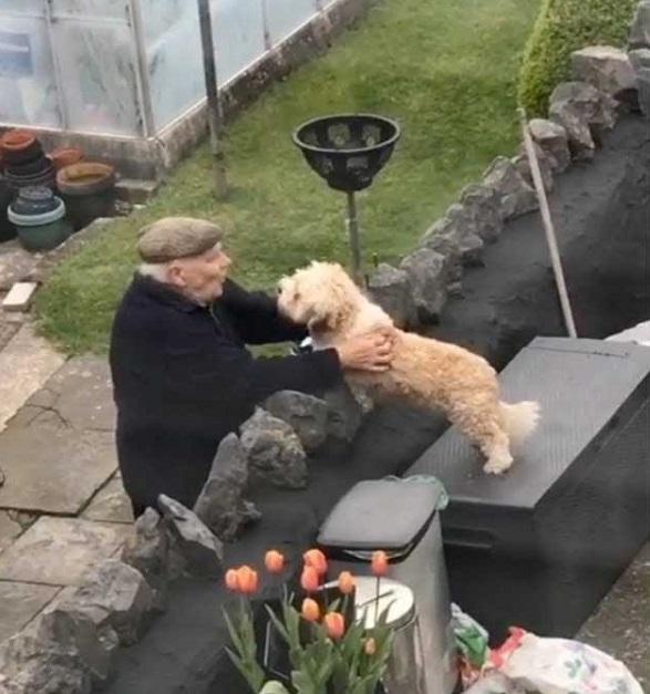 L'abbraccio del cane all'anziano