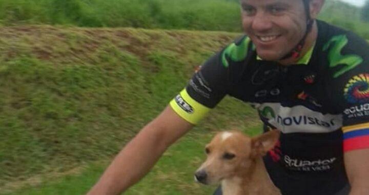 Ciclisti salvano un cane
