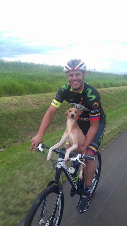 Cane salvato in bici