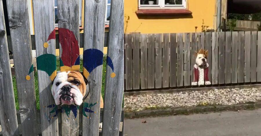 Bulldog nei buchi della recinzione