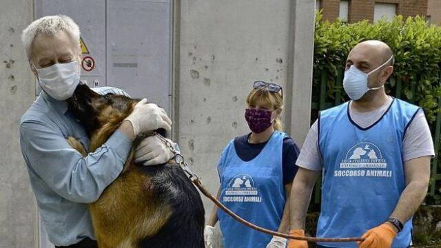Il cane Blu riabbraccia la sua famiglia
