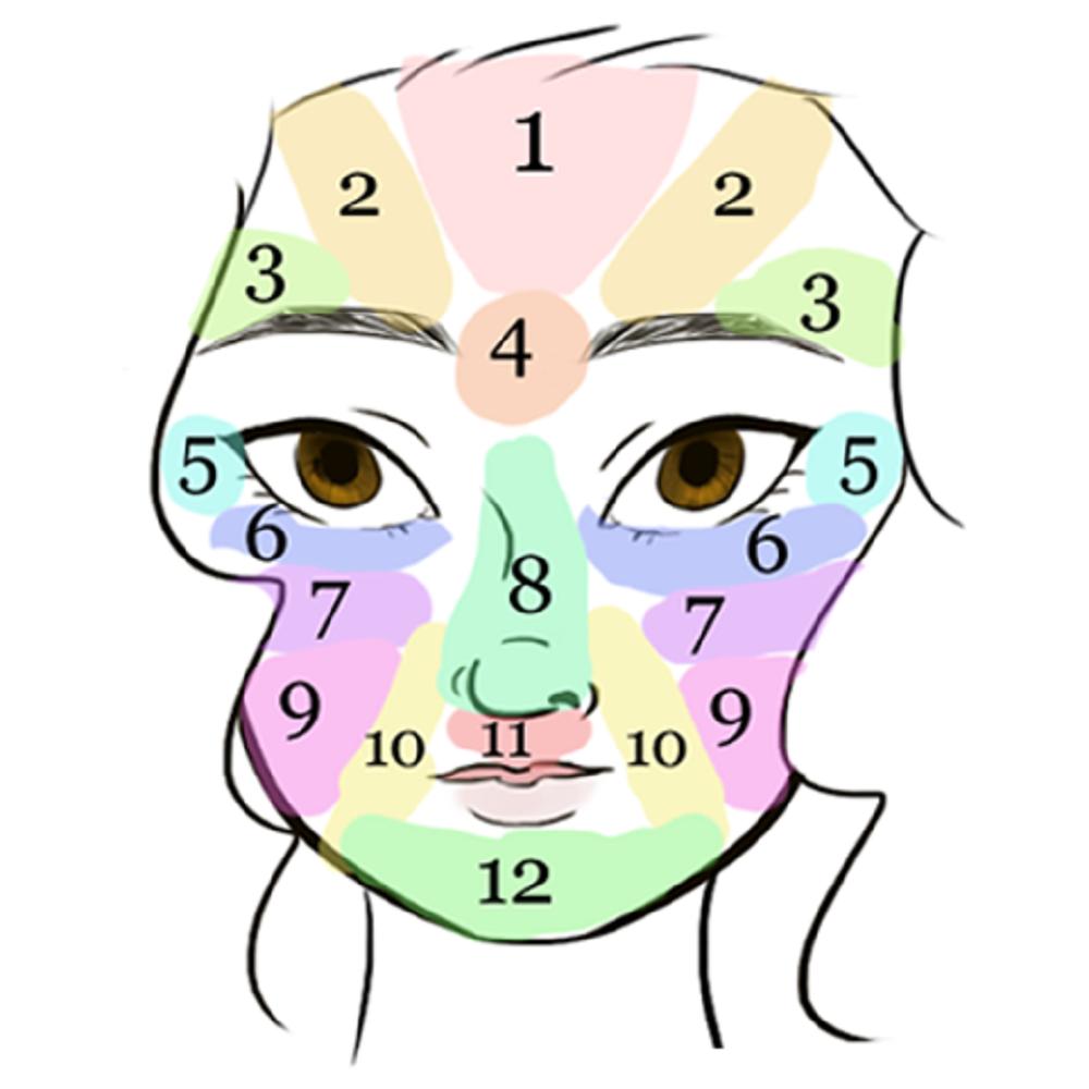 donna viso disegnato