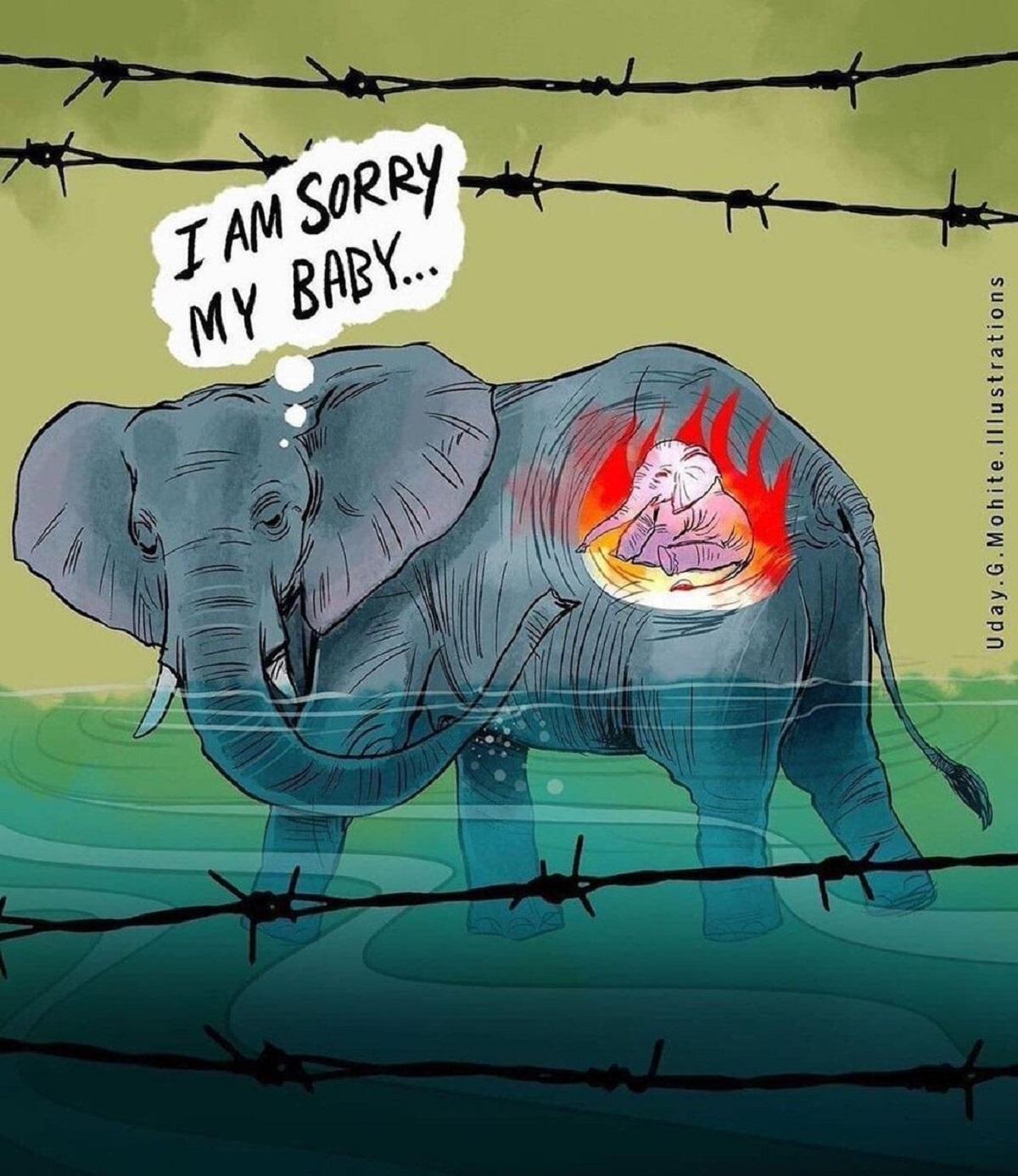 disegno elefantessa incinta