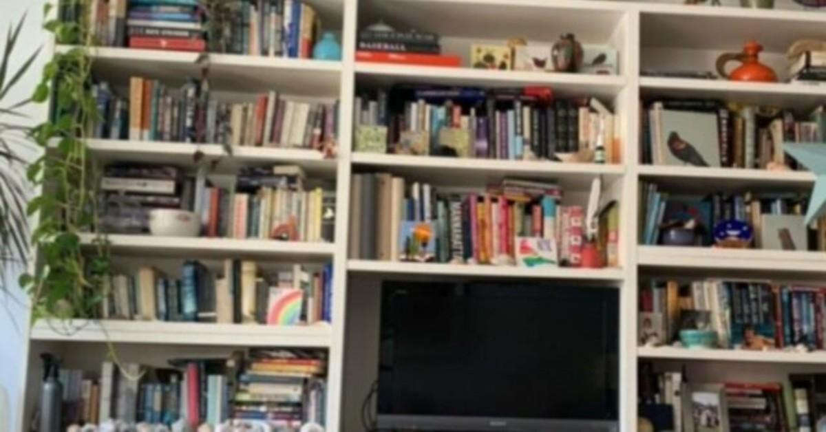 Foto biblioteca: il gatto nascosto