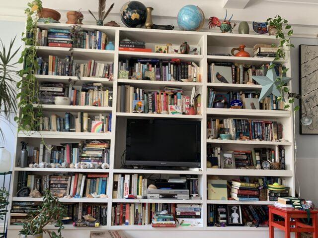 Gioco gatto nascosto biblioteca