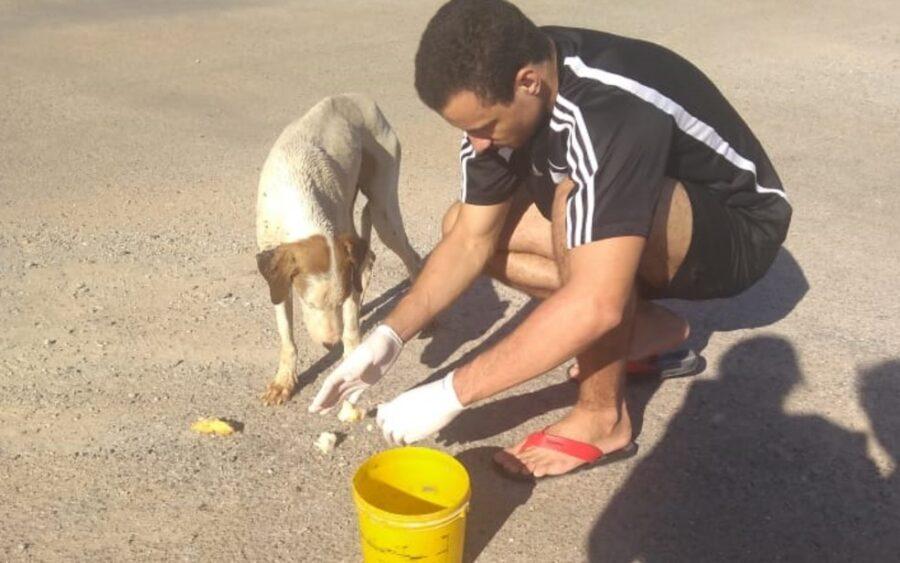 Giovane da dà mangiare al cane
