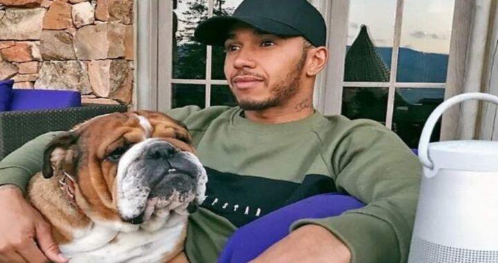 Coco, il cane di Hamilton, è morto