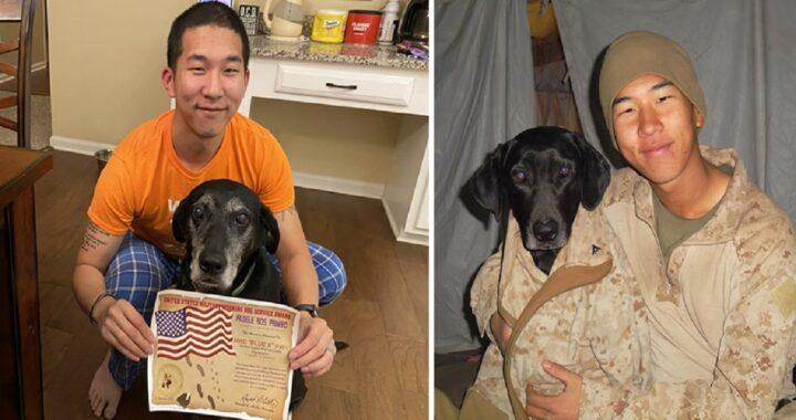 Marine adotta cane