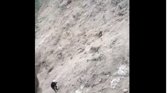 Polizia peruviana salva il cane randagio
