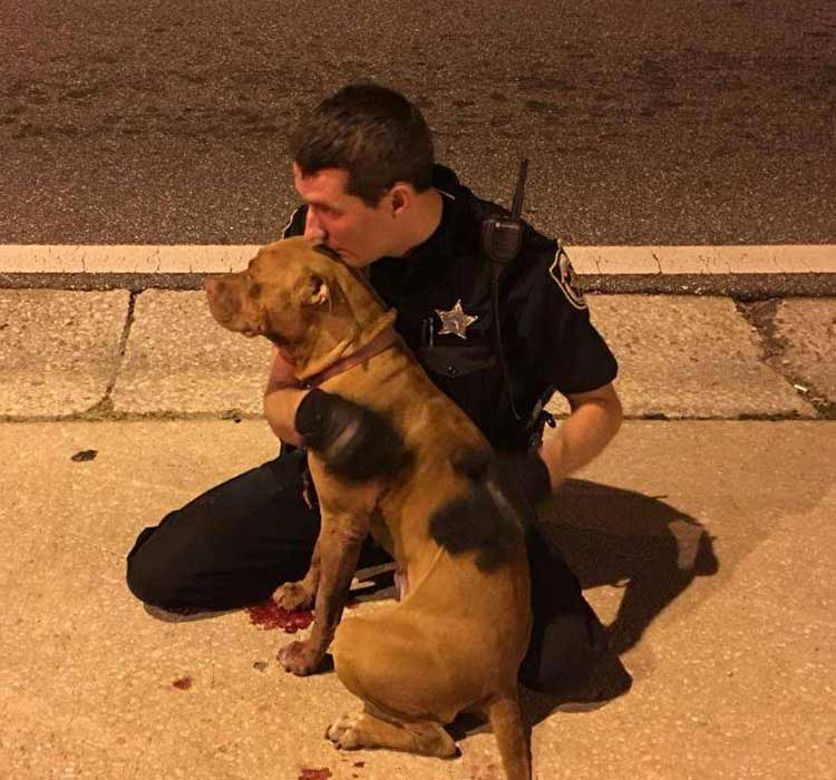 poliziotti salvano 2 cani abbandonati
