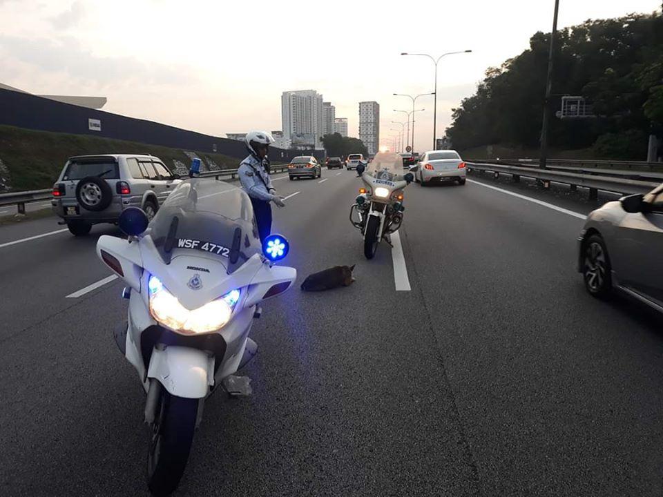 Polizia di Shah Alam