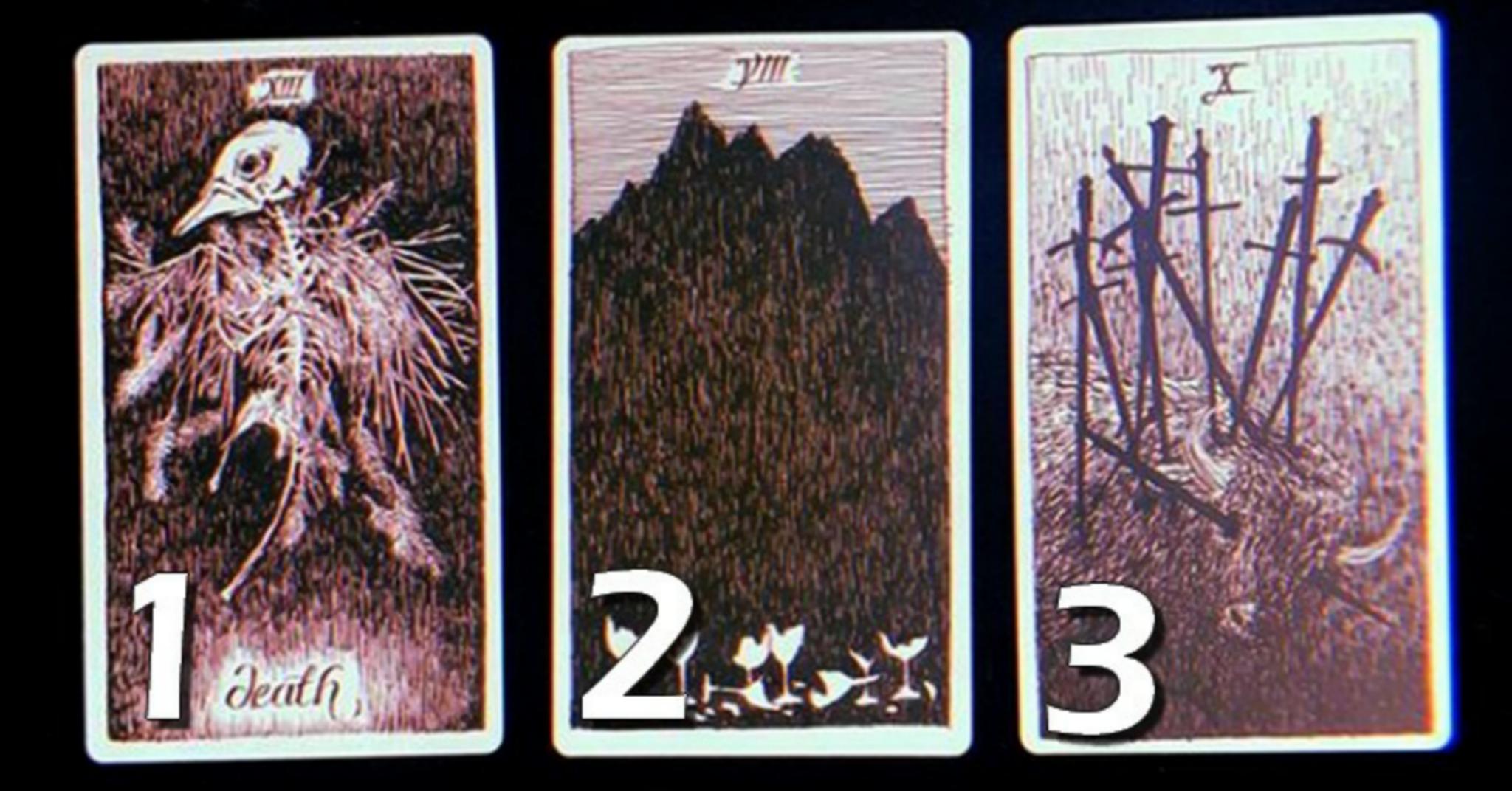 scegli-carta