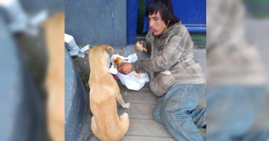 Senzatetto dà il cibo al cane