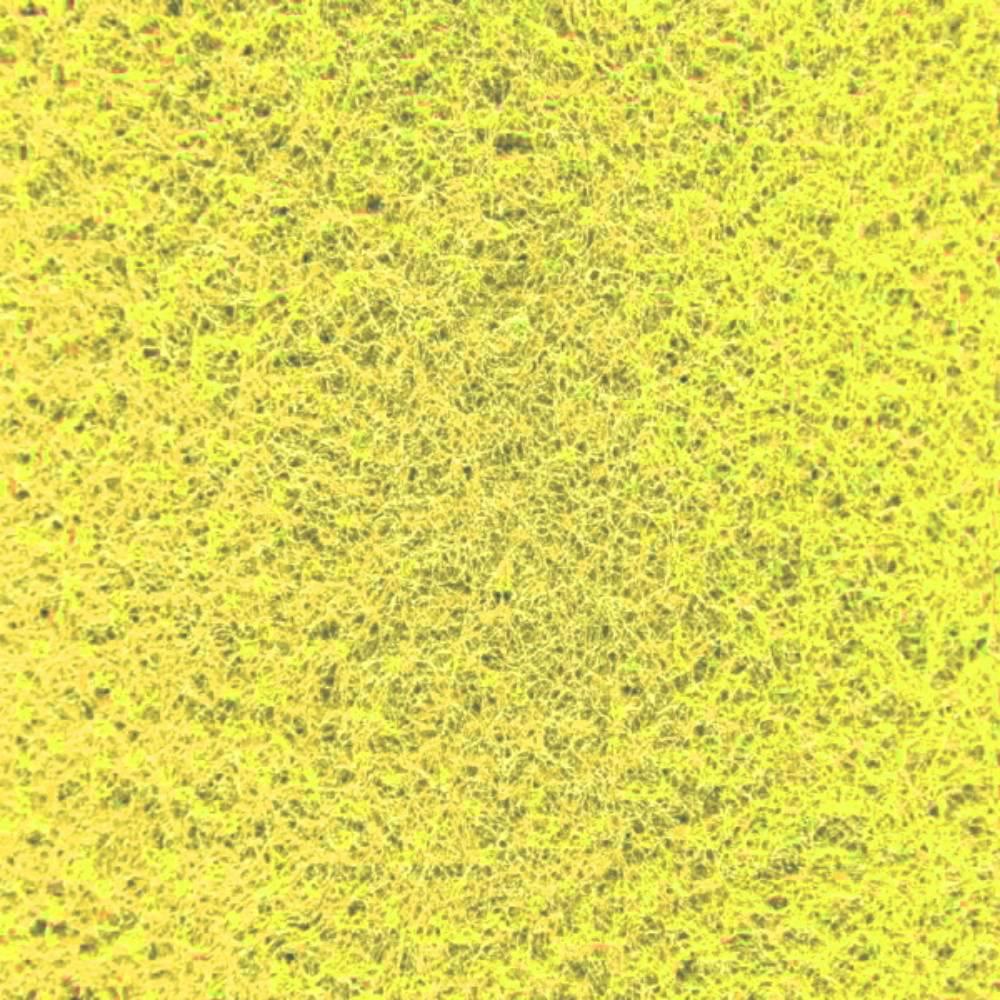 spugna gialla