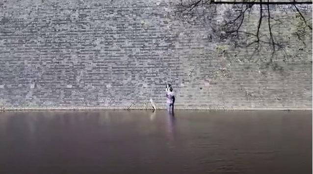 Uomo si getta in acqua per salvare gatto