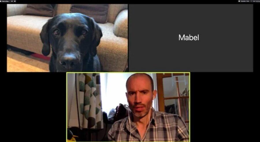 Olive e Mabel su Zoom