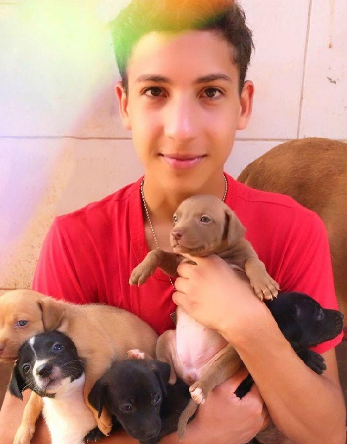 Il rifugio per animali aperti da un 17enne