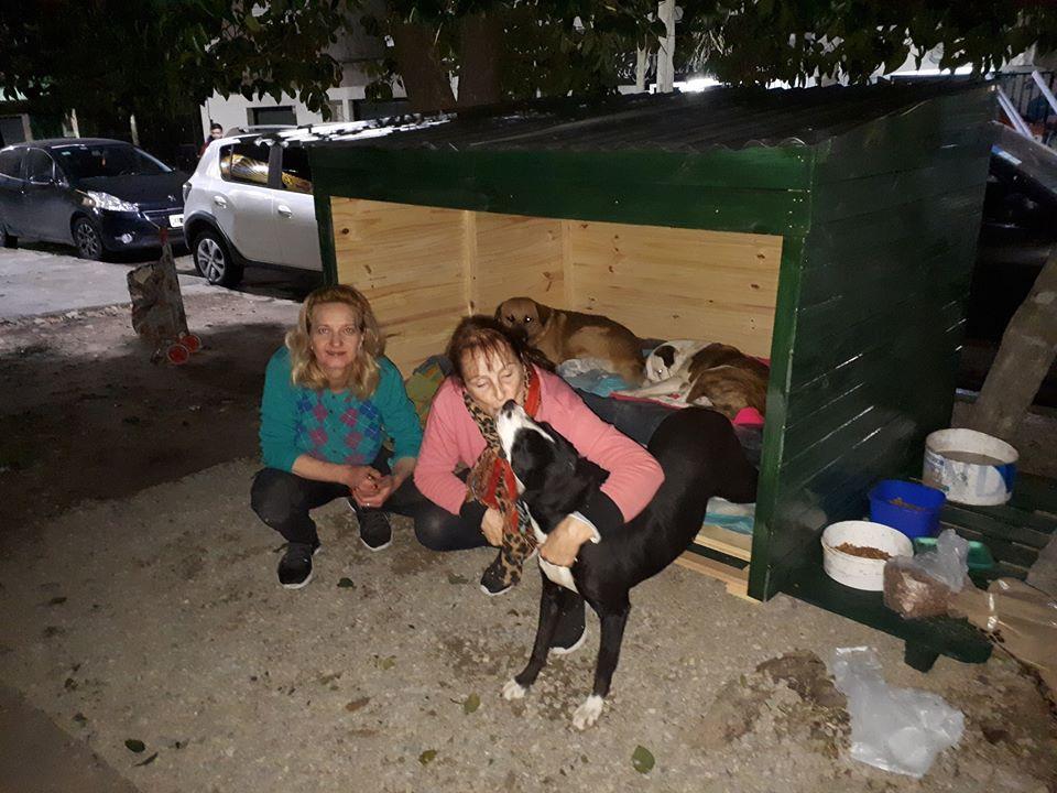 Elenice riparo cani