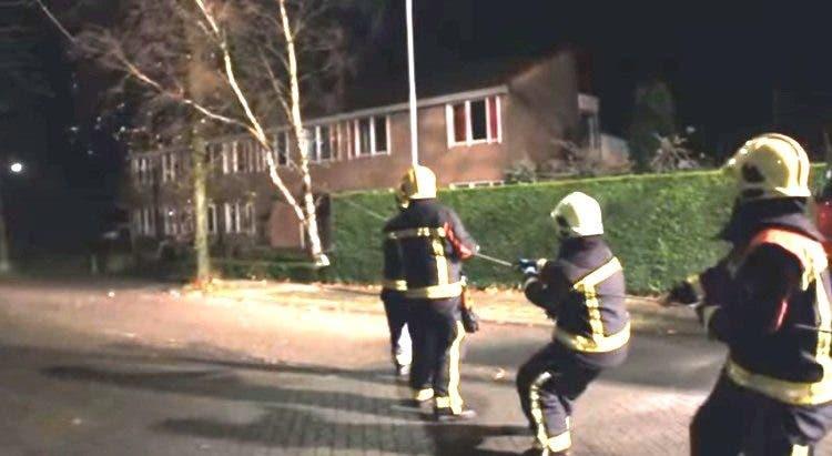 Pompieri abbattono alberi