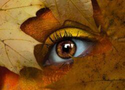 persone occhi castani