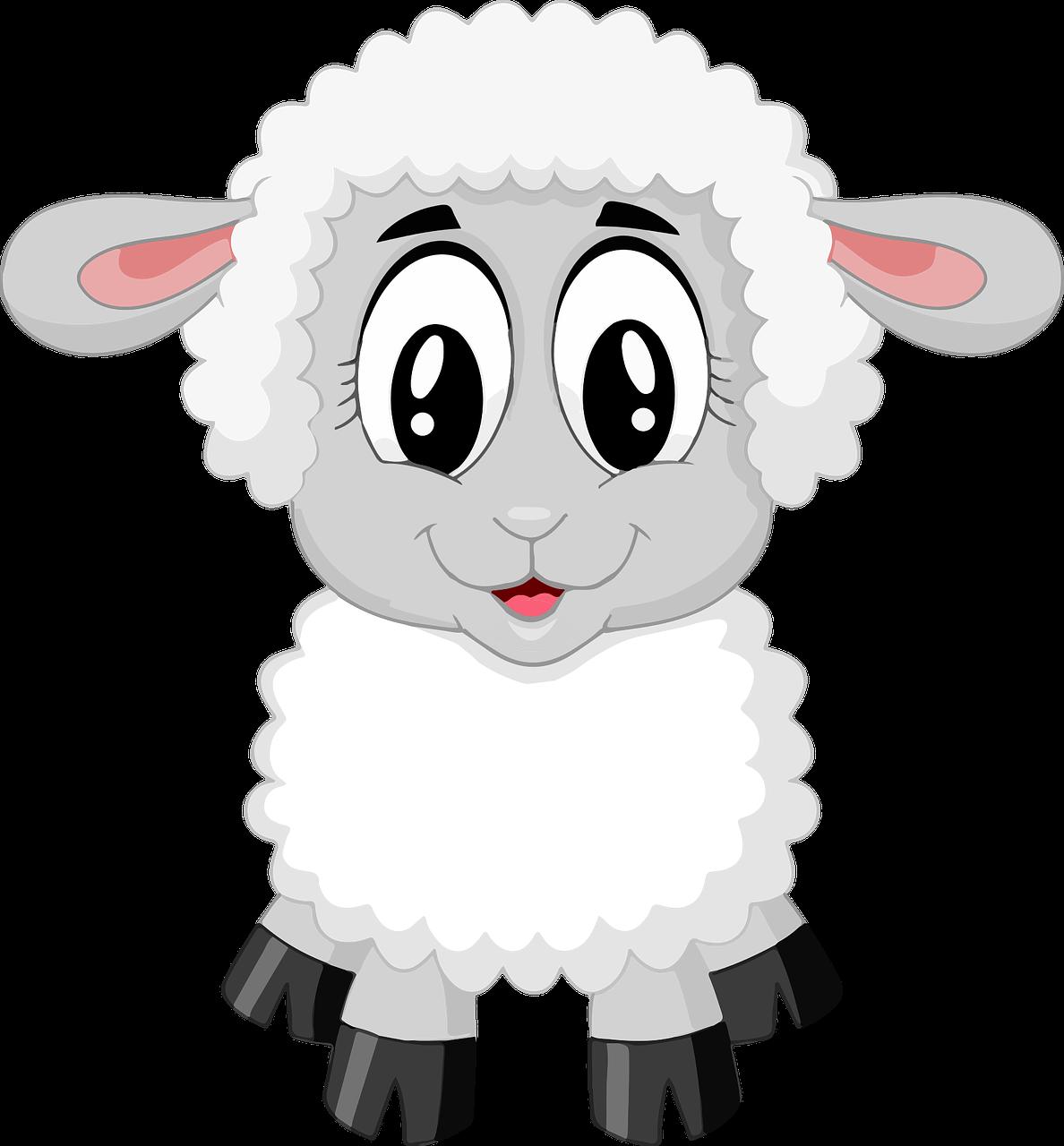 Pecorella bianca