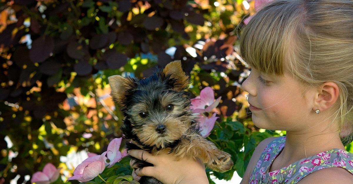 Il cane e la bambina