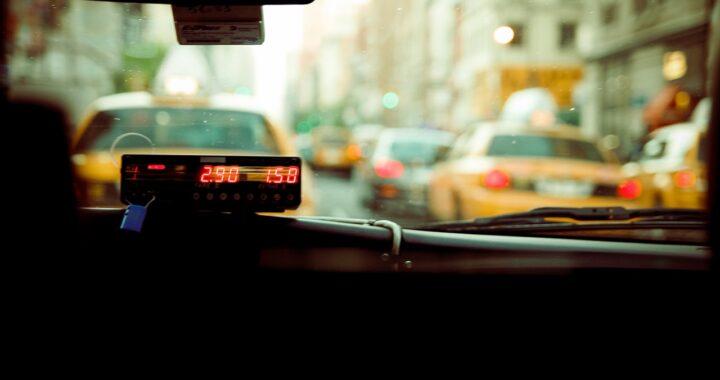Taxi accoglie donna e 8 cani