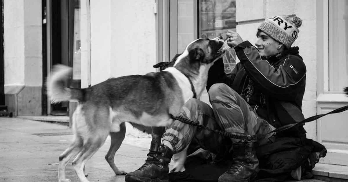 Il senzatetto e il cucciolo