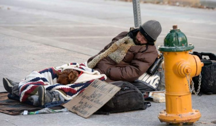 Homeless e cani in strada
