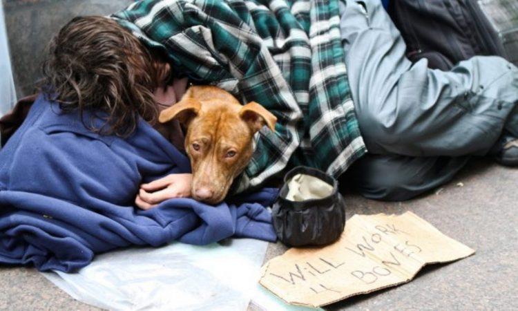 Uomo  senza una casa con cane