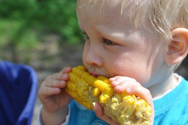Bocconi di cibo per bambini