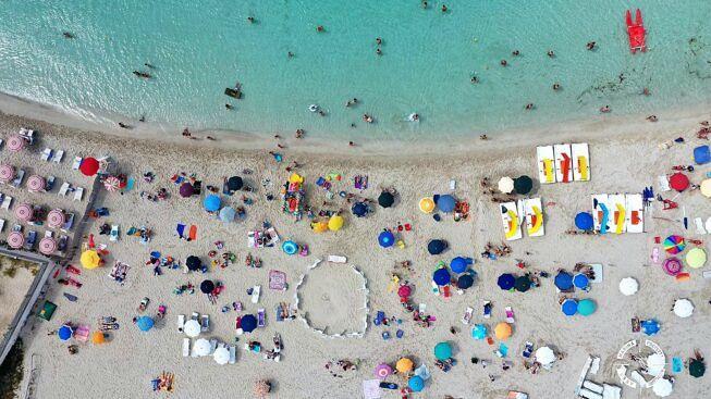 Porto Cesareo, trovato nido di tartaruga