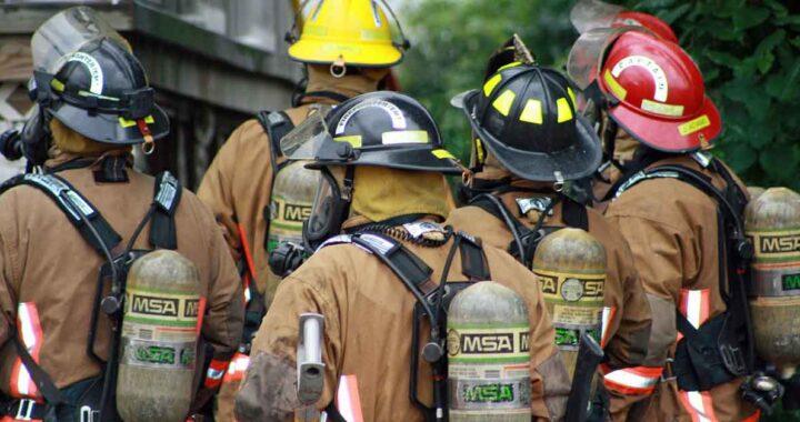 Pompieri salvano il cucciolo
