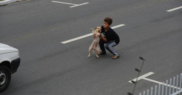 Ragazzo in strada per salvare il cane
