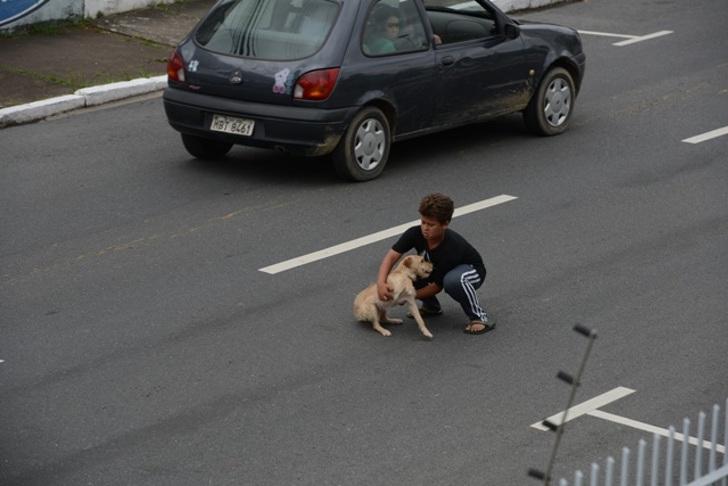 Jean Fernández salva il cucciolo