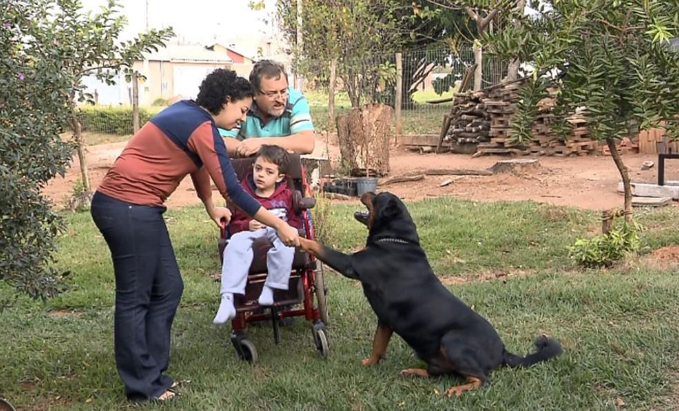 La famiglia di Quiron il Rottweiler