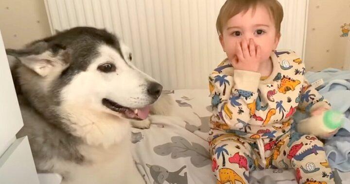 routine Parker Millie e Rupert