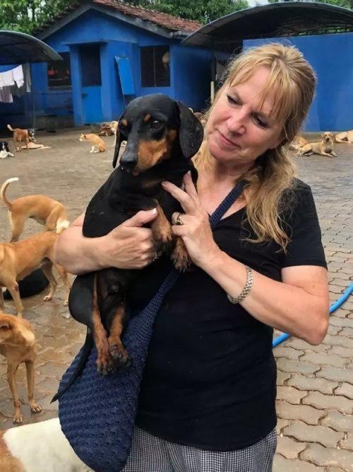 Il salvataggio del cane malnutrito