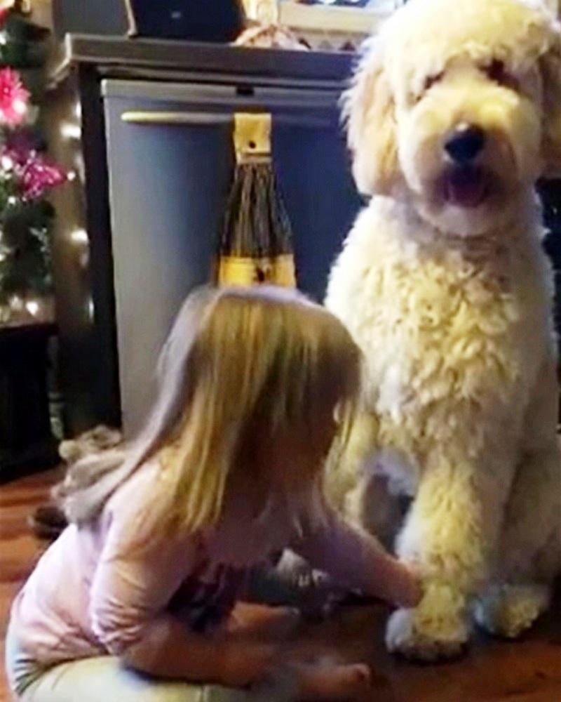 Il divertente video di Hadley e Gauge
