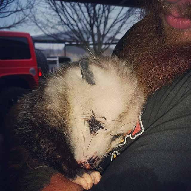 Judy Obregon e l'opossum